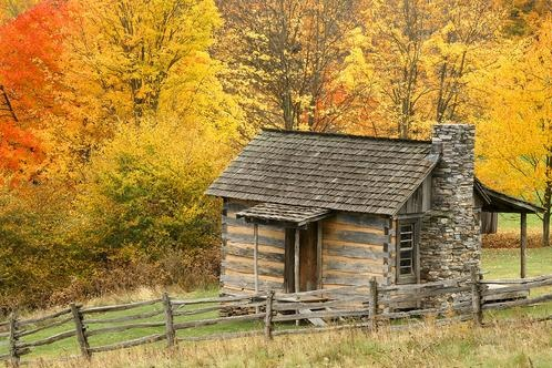 first log cabins