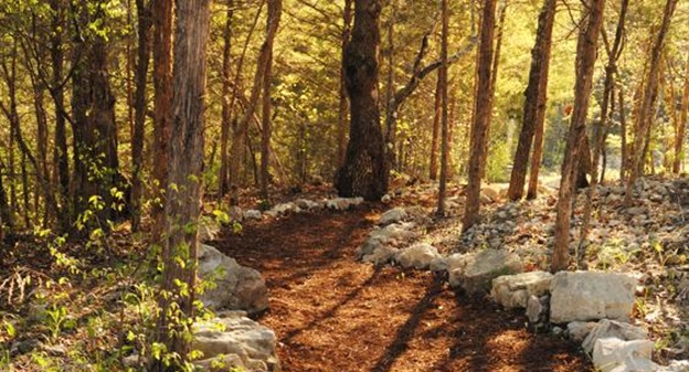 hiking trails of Branson